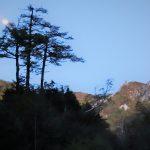 早朝の月(下山道にて)
