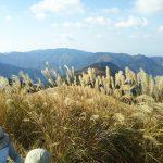 三国山(山頂から)