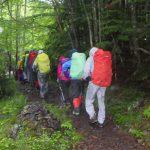 しばらくは谷筋の穏やかな山道を登りました