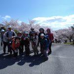 桜が満開の北山貯水池