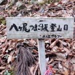 やっと八ヶ尾山登山口へ