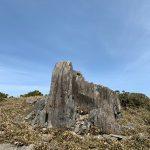 フトウガ峰手前の開けた所にぽつんと立つ岩