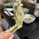 桧枝岐の宿で食べたサンショウウオの天ぷら