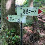 登りは谷コースです