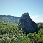 蛇紋岩のガマ岩