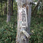 小雲取山は林の中