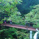 易老渡の橋を渡って山に入ります